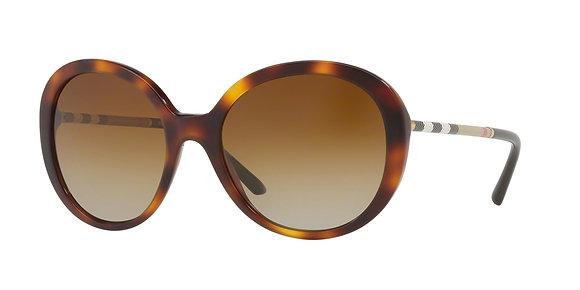 Burberry Women's Designer Sunglasses BE4239Q