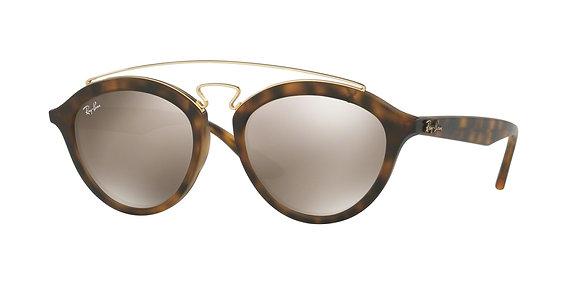 RayBan Women's Designer Sunglasses RB4257F
