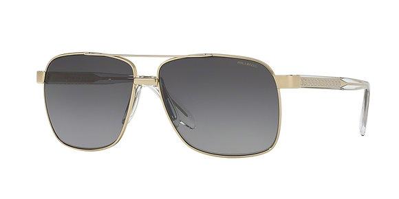 Versace Men's Designer Sunglasses VE2174