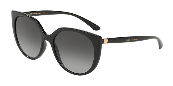 Dolce Gabbana Women's Designer Sunglasses DG6119