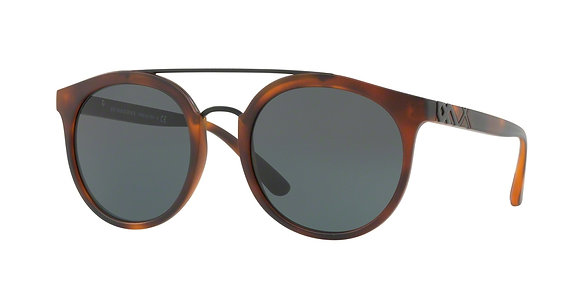 Burberry Men's Designer Sunglasses BE4244
