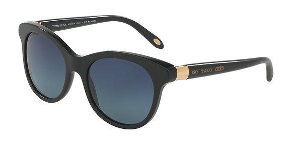 Tiffany Women's Designer Sunglasses TF4125