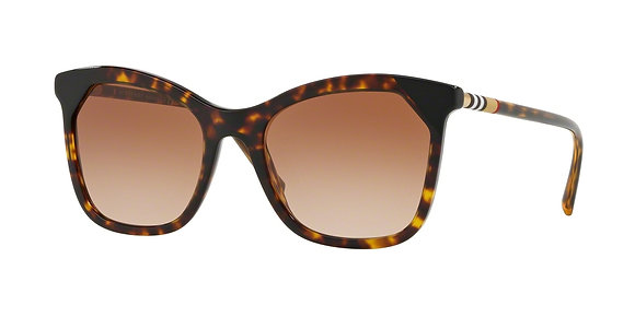 Burberry Men's Designer Sunglasses BE4263