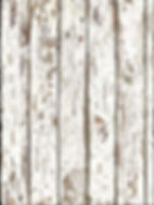 wood background2.jpg
