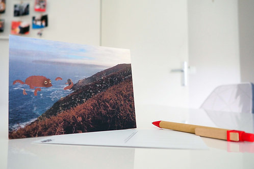 Carte postale Pointe du Raz, Finistère