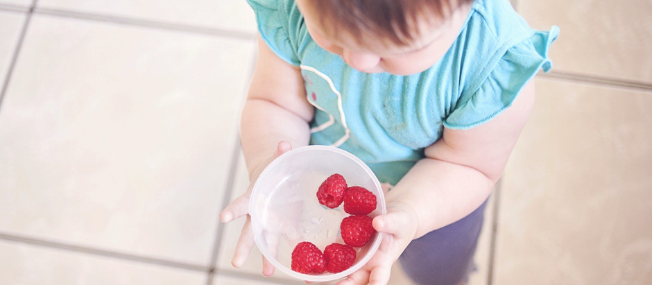 Introducing Solids - Doing it the Right Way