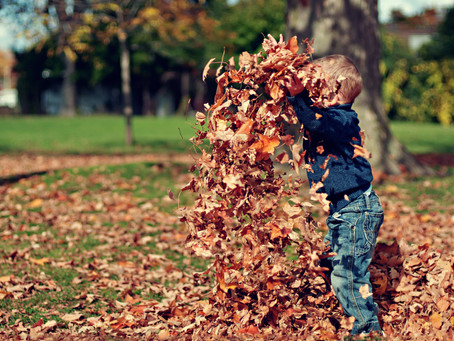 Fun Fall Activities to Boost Speech and Language Skills