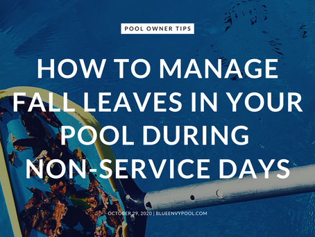 How to Manage Fall Leaves In Your Pool During Non-Service Days