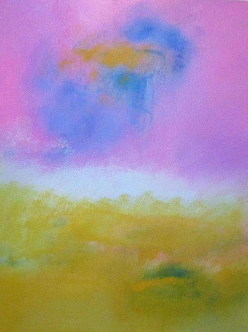 Camellia Pink Sky