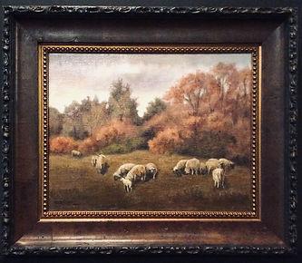 Sheep in Autumn.JPG