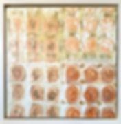 Framed Monoprints.jpg