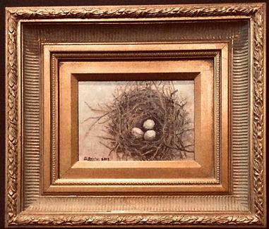 Bird Nest Study #2.JPG