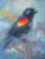 Red Winged Blackbird II.jpg