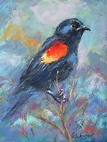 Red Winged Blackbird II.jpg