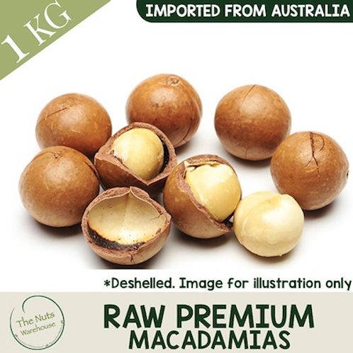 Raw Premium Macadamias Nuts - 500g (no shell)