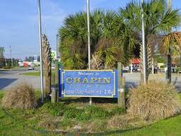 Chapin sc.jpg