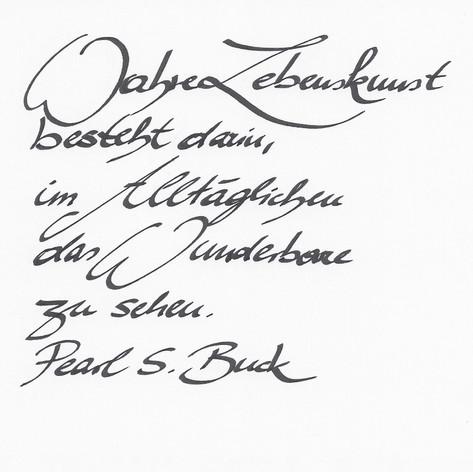 Taddy - Handschrift
