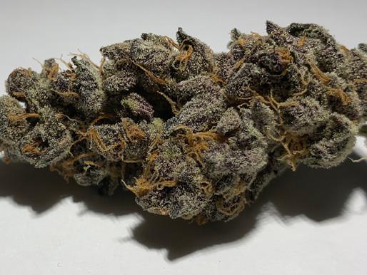 Tropicana (Sativa)