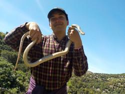 Puma Canyon 034
