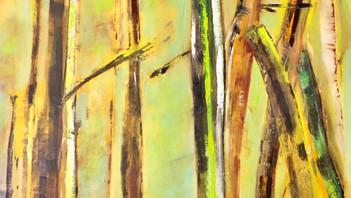 Lichter Wald / Light Wood
