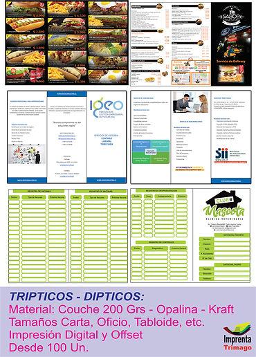 tripticos Dipticos.jpg