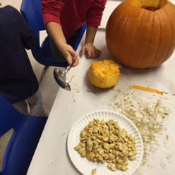 Pumpkin Possibilities!