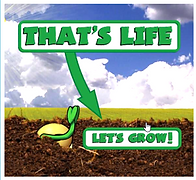 Let's Grow.png