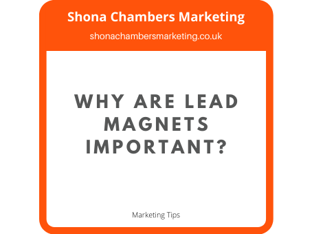 Why are lead magnets important?