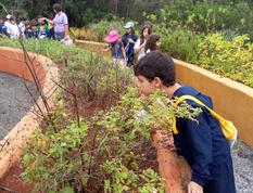Explorando o Jardim Sensorial.PNG