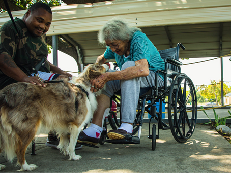 Resident's Best Friend – The Benefits of Pet Therapy in Long-Term Care