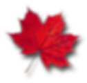 Maple-Leaf-PNG-Pic.png