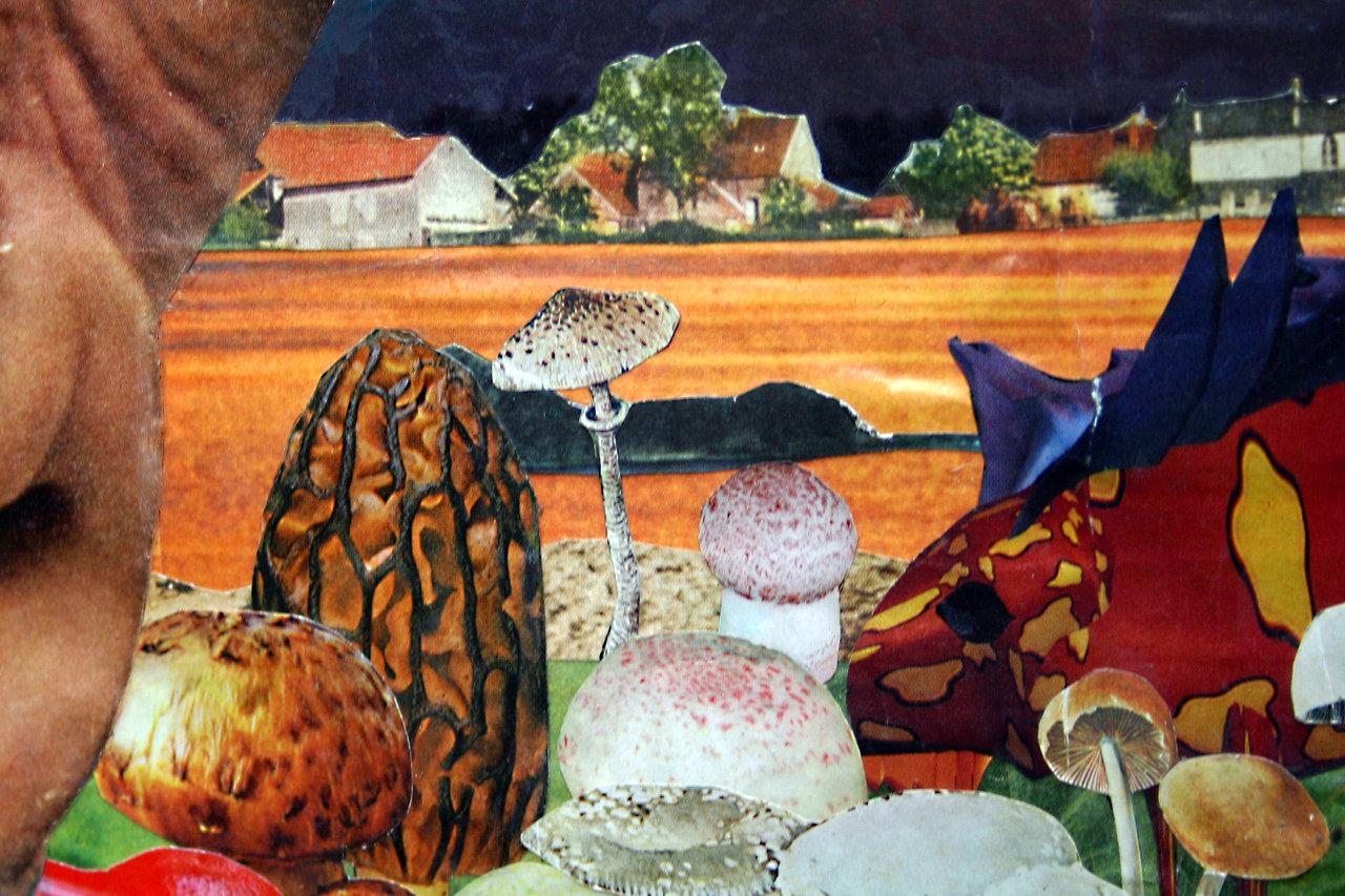 Paper Collage Mushroom Art