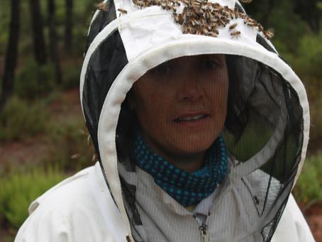 La velutina: una nova invasió que fa perillar les nostres abelles