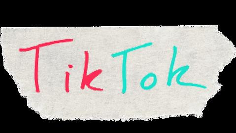 2. TikTok Button.png