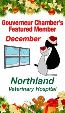 Northland Veterinary