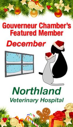 Northland Veterinary