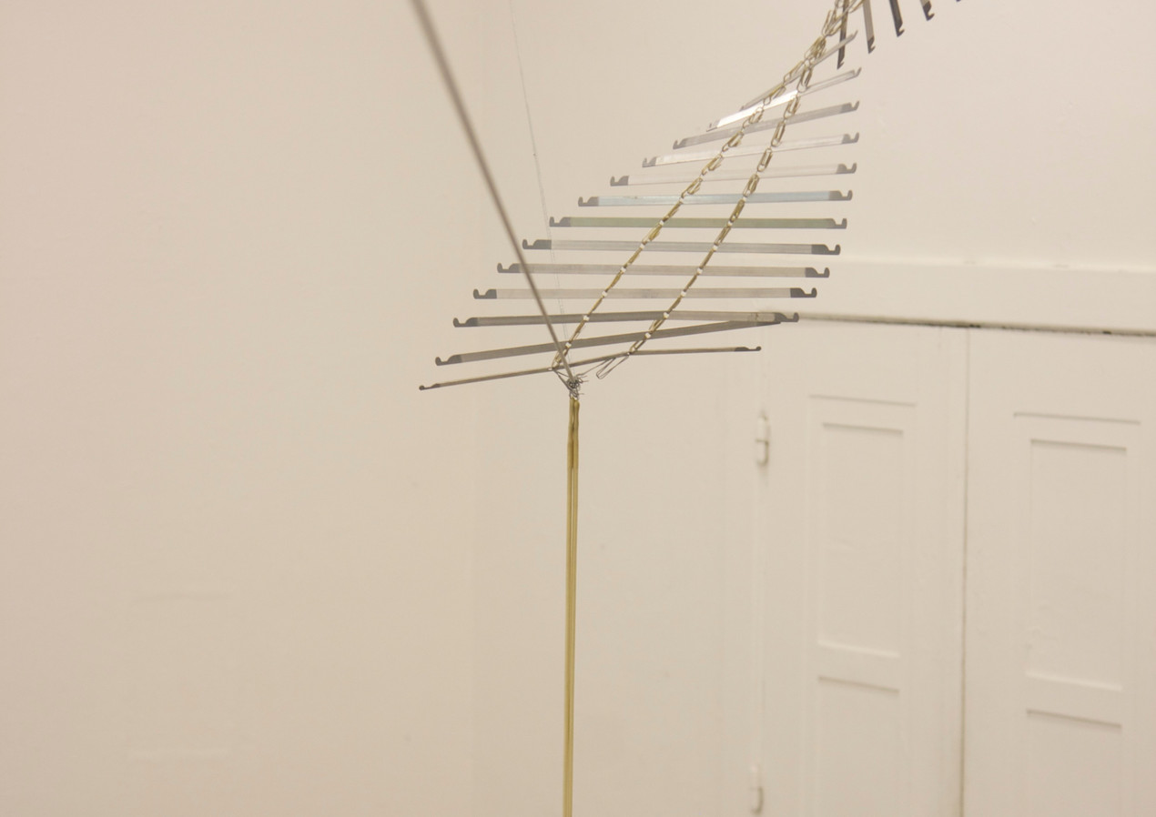 Back folder spines, paper clips, wire attached from wall to tree, 2014