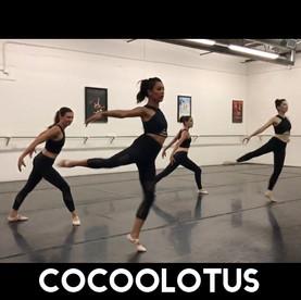 CocooLotus