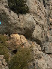 A climbing trip in Camarasa, Spain.