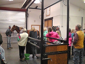 Chilcoot Large Animal Vet Clinic Lecture