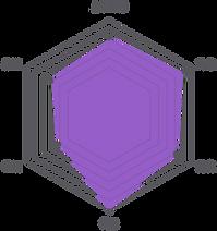 網站素材_軟型六角圖.png