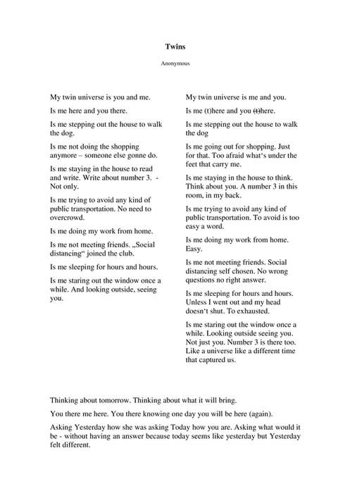 Twin Poem