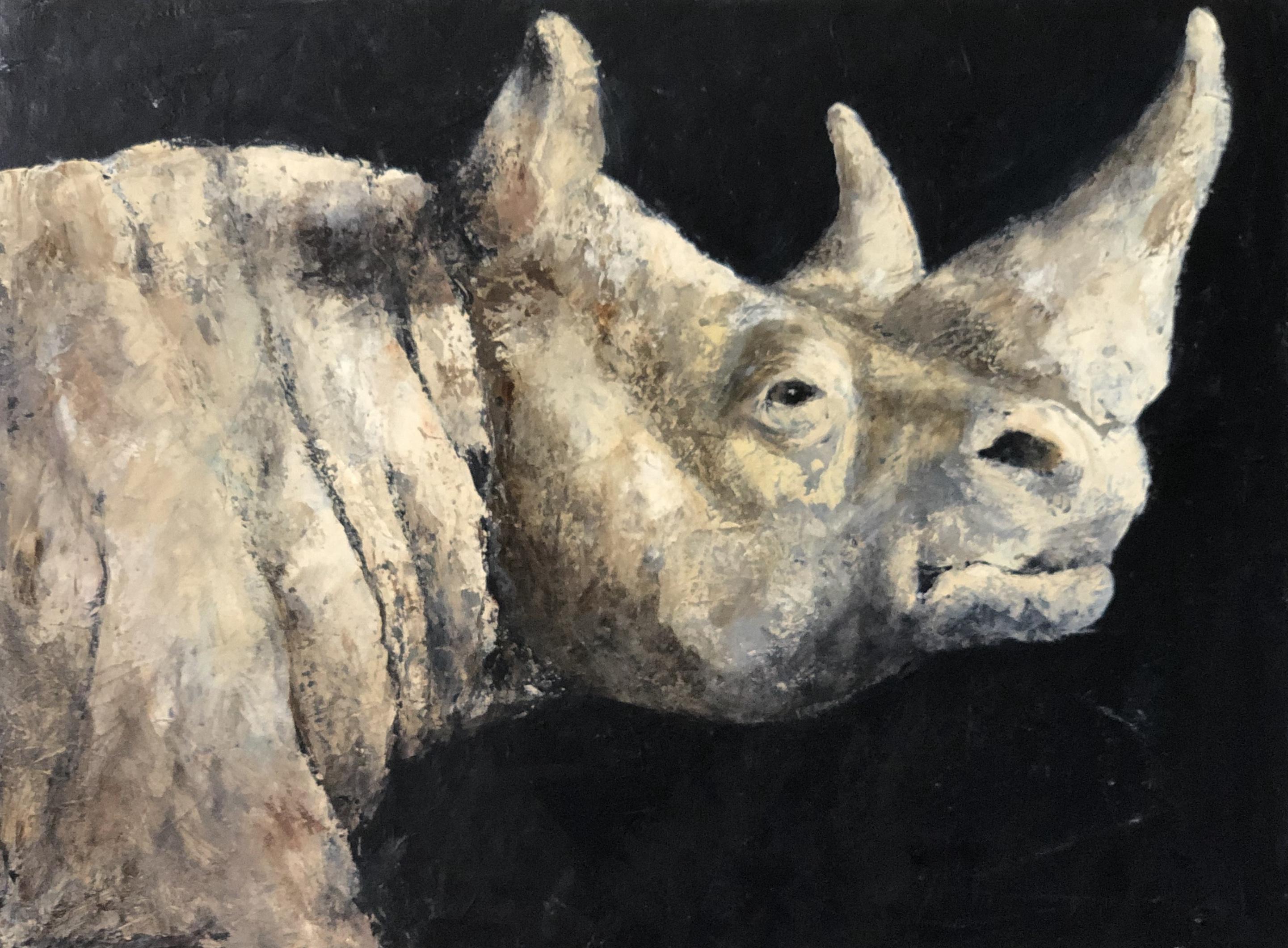 Rhino 2020