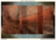 Phototaxis_Postcard_v01.jpg