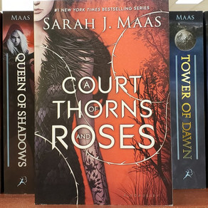 A Court of Abuse and Violence - The Case of Pernicious Sexual Assault in ACOTAR