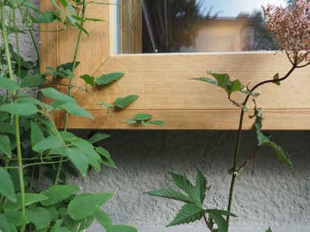 Sitzfenster Bern