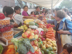 organic food for everyone