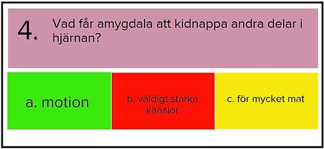 FRÅGA 4 H.jpg
