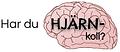har_du_hjärnkoll-bild.png