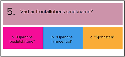 FRÅGA 5 H.png